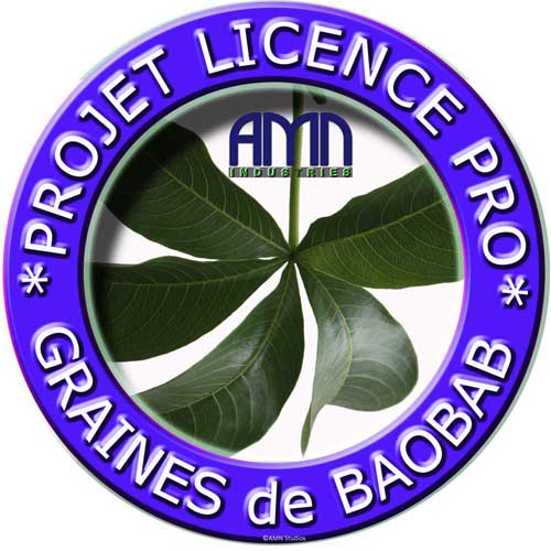 AMN Group Innovation and Sustainable Development